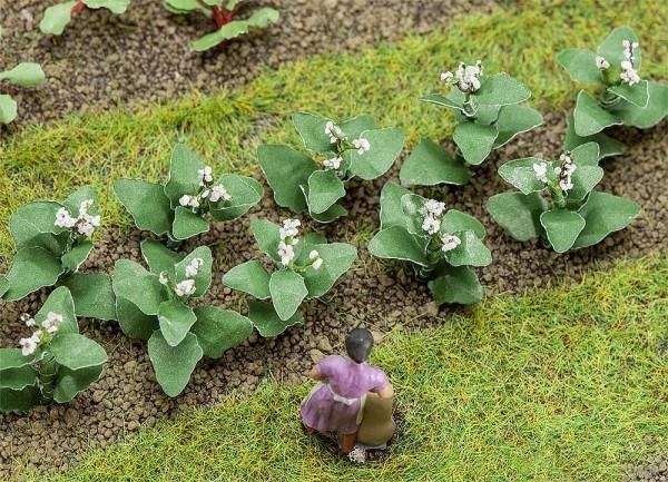 Faller 181275 - H0 - 14 Tabakpflanzen, h = 19 mm