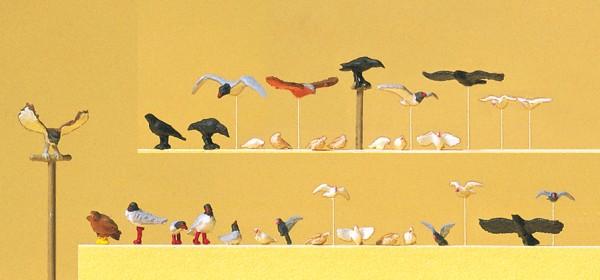 Preiser 10169 - H0 - Tauben, Möven, Krähen und Raubvögel