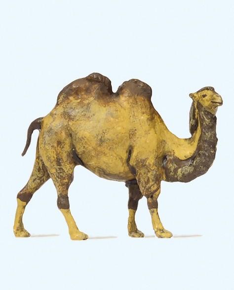 Preiser 29506 - H0 - Kamel