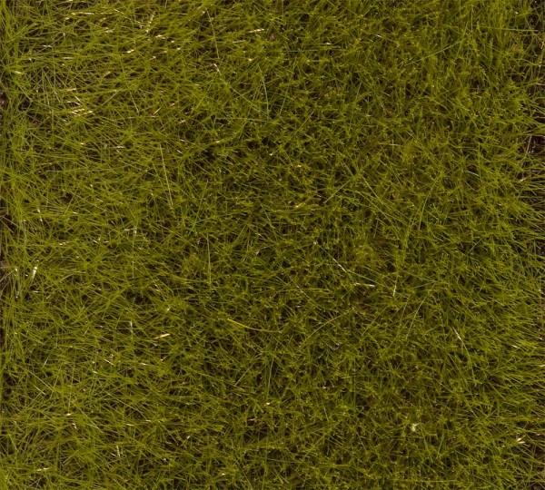 Faller 170772 - PREMIUM Streufasern Frühsommerwiese, 30 g, 6 mm