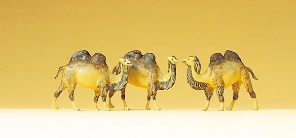 Preiser 79711 - Kamele