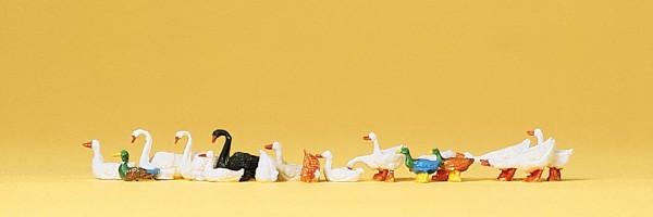 Preiser 14167 - H0 - Enten, Gänse und Schwäne