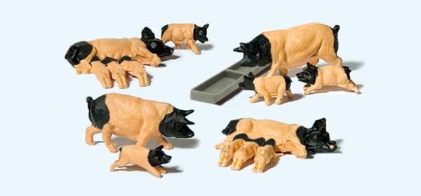 Preiser 10149 - Schwäbisch Hällische Schweine