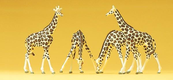 Preiser 79715 - Giraffen