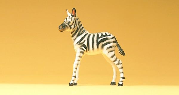 Preiser 47530 - 1:25 - Zebrafohlen
