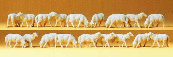 Preiser 14161 - H0 - Schafe